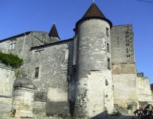 otard-valois-castle-king_francois_i-birth.cobber17.wiki